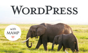 MAMPを使用したローカルでのWordPressインストール