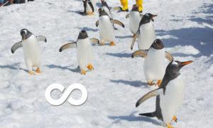 Linux-Ubuntuログイン無限ループ事件