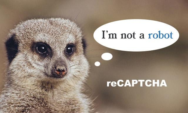 Contact Form7でreCAPTCHA v3を導入する