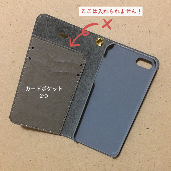spcase-01